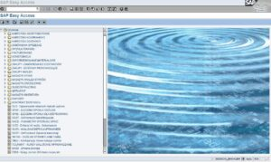 integracja-SAP-R3